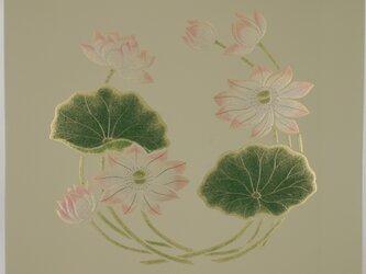 漆の天井絵 山鳩 蓮の画像