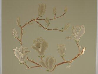 漆の天井絵 山鳩 木蓮の画像