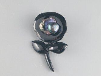 漆黒真珠のお花の画像