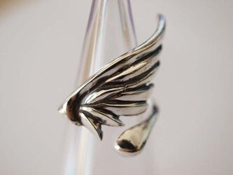 羽のリングの画像