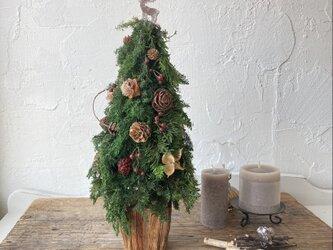 【早割り】ナチュラルなクリスマスツリー〜トナカイ〜の画像