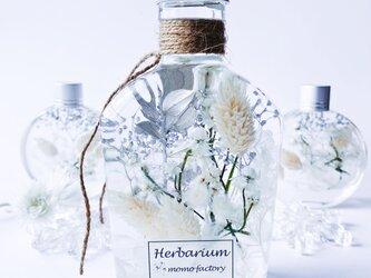 雪のハーバリウム   snow white ボタニカルの画像
