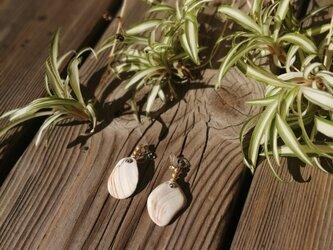 マロンカラーとホワイトの貝殻イヤリングの画像