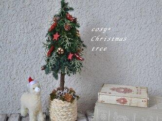 アルパカとクリスマスツリーの画像