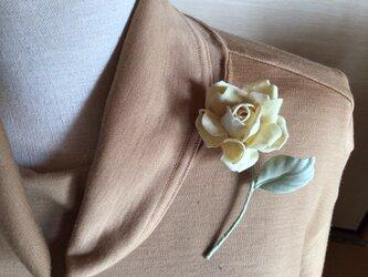 小さな黄色の薔薇の画像