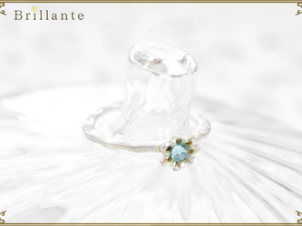 petit florence ring (MS-mint)の画像