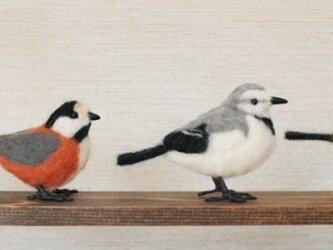 羊毛フェルト 小さな野鳥セットの画像