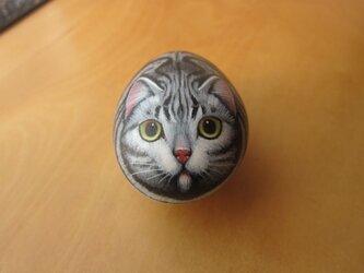 アメショーの石猫の画像