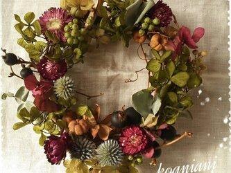 アジサイ gradation wreathの画像