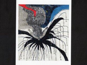選べる2枚セットポストカード「爪と爪を擦ったら」の画像