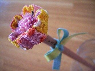 世界にひとつだけの花エンピツシリーズ(珊瑚山吹色)-38の画像
