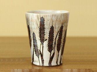 麦の穂粉引ビールカップの画像
