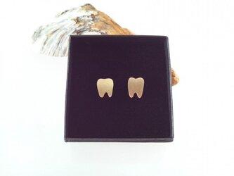 Tooth Brass カフス ◇歯の真鍮カフス◇の画像
