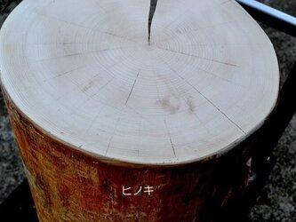 木の話その1 年輪、節 (作品の補足ページ)の画像