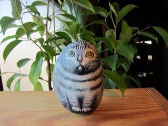 アメショーの石猫(ST)の画像
