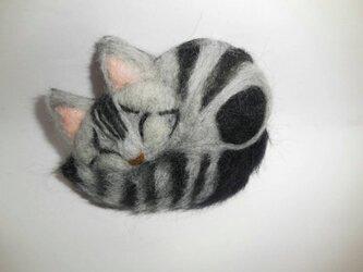 眠るアメショー ブローチの画像