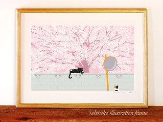 たびねこイラストフレーム-04 桜の樹の下での画像