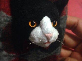 猫 携帯ケースの画像