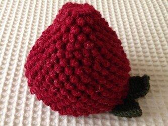 フルーツ帽(春イチゴ)の画像