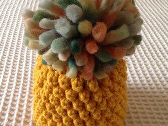 フルーツ帽(完熟パイナップル)の画像