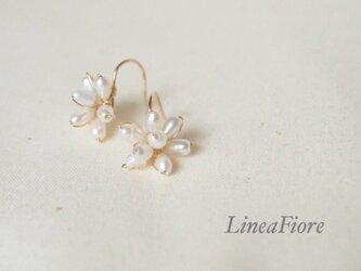 小花のパール◇フックピアス14kgfの画像