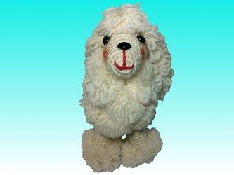 スタンダードプードル 手編み犬あみぐるみホワイト ハンドメイドの画像