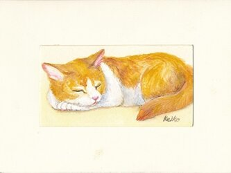 眠り猫 (額入り)の画像