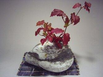 石輪挿し 石ころの花器    K-78の画像