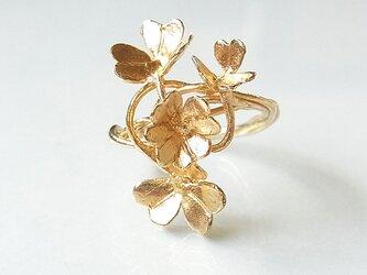 クローバーリング(gold)の画像