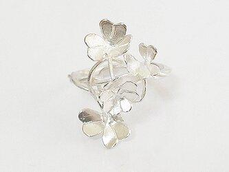 クローバーリング(silver)の画像