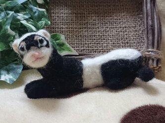 羊毛フェルト・フェレット(パンダ)の画像