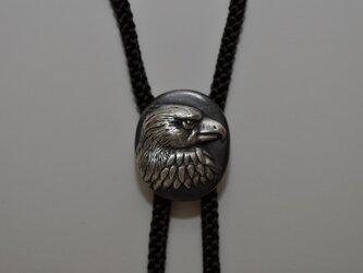 ル-プタイ(鷹)の画像