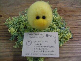 fuwafuwakpまん丸手乗りシリーズ~ぴーやん~の画像