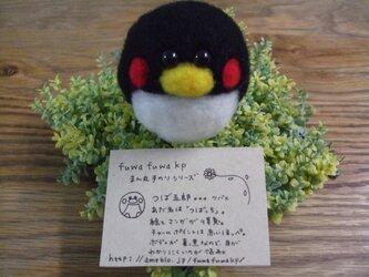 fuwafuwakpまん丸手乗りシリーズ~つば五郎~の画像