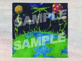 木のポストカード『惑星植物』の画像