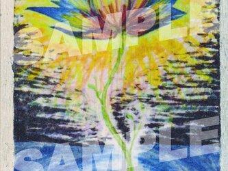 木のポストカード『幻の花』の画像