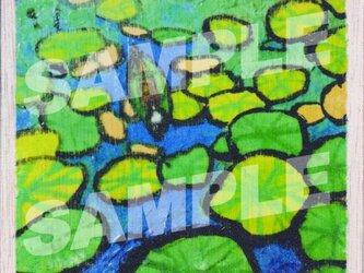 木のポストカード『オオオニバス』の画像