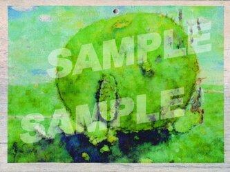 木のポストカード『こけいえ』の画像