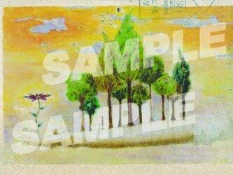 木のポストカード『手になる木』の画像