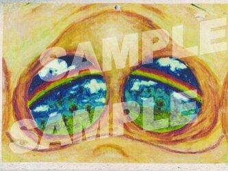 木のポストカード『ぶたの夢』の画像
