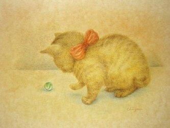 ビー玉で遊ぶ子猫の画像