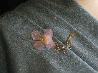 蝶々のピンの画像