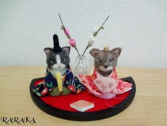 猫雛様の画像