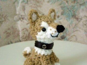 SOLD 柴犬あみぐるみの画像