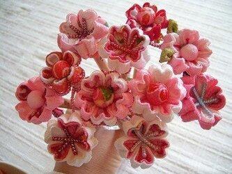 花エンピツ (ピンクカラーシリーズ)の画像
