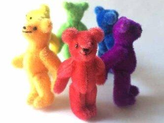 レインボーベア Rainbow bearの画像