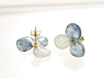 アジサイ【S/藍染】3枚花弁のピアス/イヤリング 14kgfの画像