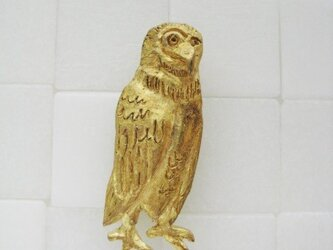OWL  PINの画像