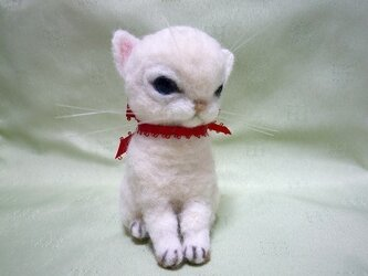 羊毛フェルトの白い子猫の画像