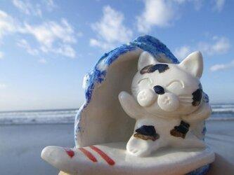 波乗り猫①の画像